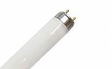 Osram Tubo Fluorescente Radium
