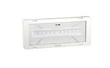 Schneider Electric Exiway Smartled 11/24W 300lm IP65 SA