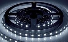 Arteleta Stiscia LED luminosa 5m 20W/M bianca 6500°K